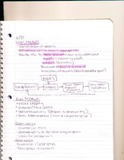 HHp 3643 Notes 9: logics model