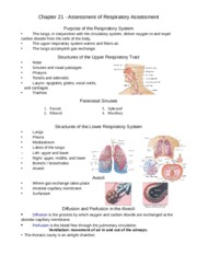 4-Respiratory Pediatric Assess