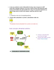 Lecture 3 stem cells and signaling NOTES
