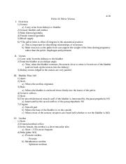 4-18_Lecture 10.docx