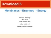 Membranes Enzymes and Energy