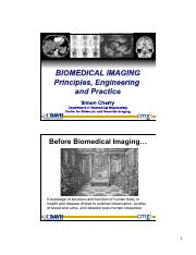 BIM001_Biomedical_Imaging_121126_121205.pdf