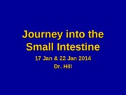 Journey into the Small Intestine 2014