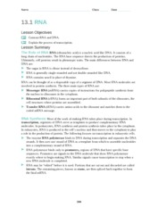 13.3_Mutations - Name Class Date 13.3 Mutations Lesson Objectives ...