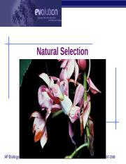 1 natural selection.ppt