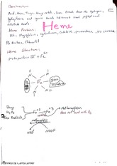 Endocrine and electrolytes-Notes