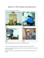 Module 14 Office Safety and Ergonomics.docx