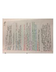 Anglo-Saxon Beowulf Notes