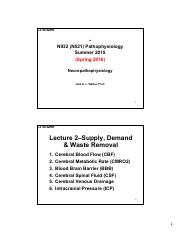 N932 SU2015 Sakai L2-Neuronal Supply and Demand 2-Slide