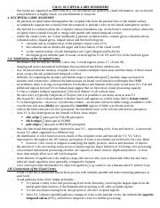 CH.13 - occipital disorders (U10).docx