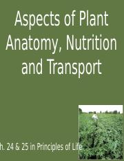 Aspects of Plant Anatomy Nutrition and Transport.pptx