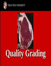 Beef_Grading.ppt