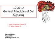 Class+10-22-14Cell+signaling