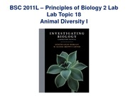 Lab 18 on Animal Diversity