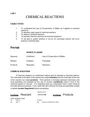 Lab 3 Chemical Reactions.pdf