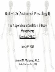 Ex10 and Ex11 Appendicular Sekelton and Movments by synovial joints AM.pdf