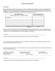 PEER RATING FORM
