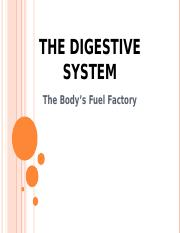 BIO-REPORT-DIGESTIVE-SYSTEM.ppt