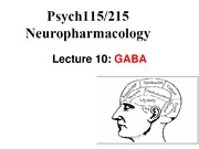 Lecture 10-GABA Lecture