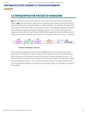 Chapter 1.5 S-4- Transcription-the process of making RNA - WebCOM™ 2.0 copy
