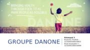 PPT Danone fix