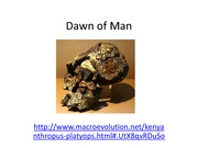 2. Dawn of Man