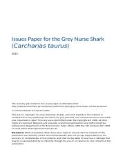 issues-paper-grey-nurse-shark-carcharias-taurus.docx