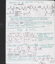 acetoacetic ester syn notes