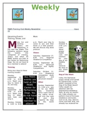 Lab 7-1 Paws Newsletter