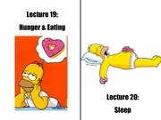 3_5M Lecture_20_Sleep