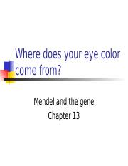 2015-chapter13-genetics-student.ppt