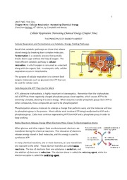 6900126-AP-Bio-Chapter-Nine-Cellular-Respiration-Harvesting-Chemical-Energy-1