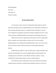 The DEA and Efforts Essay