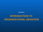 Introduction to organizational behavior chap1