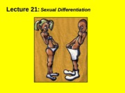 (21) Sexual differentiation.ppt