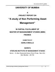 37559117-npa-management.pdf