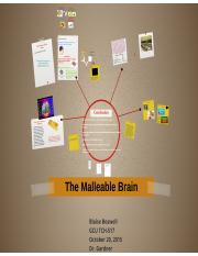The Malleable Brain