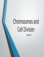 Chapter 6. Chromosomes and Cell Division(1) (1)