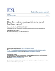 How does patient experience fit into the overall healthcare pictu