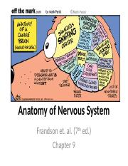Anatomy of Nervous System fall 2010