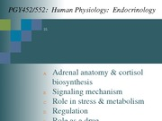 Topic 10-Cortisol_2014-Handout