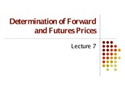 Lecture 7 (Pricing Strategies for Future and Forward Contracts)