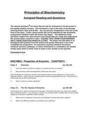 Chapter 5 Reading Questions