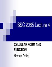 Lecture4 Cellular Form and Function.pdf