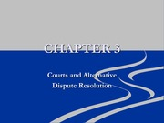 Chapter 3 Courts and Alternative Lecture