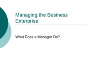 A037+Managing+the+Business+Enterprise