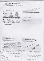 childhood and adolescence worksheet