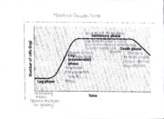 Microbial Growth Curve and Rxn Relationship