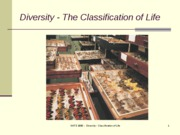 Lecture 7- The classification of life