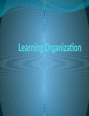 Learning Organization.pptx
